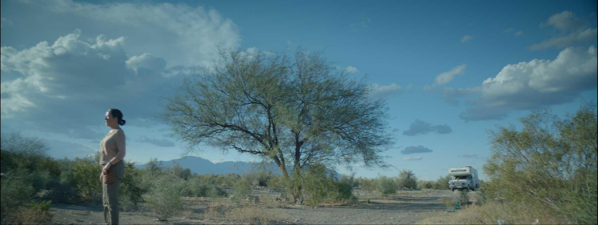 une femme au milieu d'un paysage aride